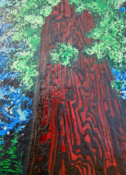 Mother Sequoia And The California Stars Art | buchanart