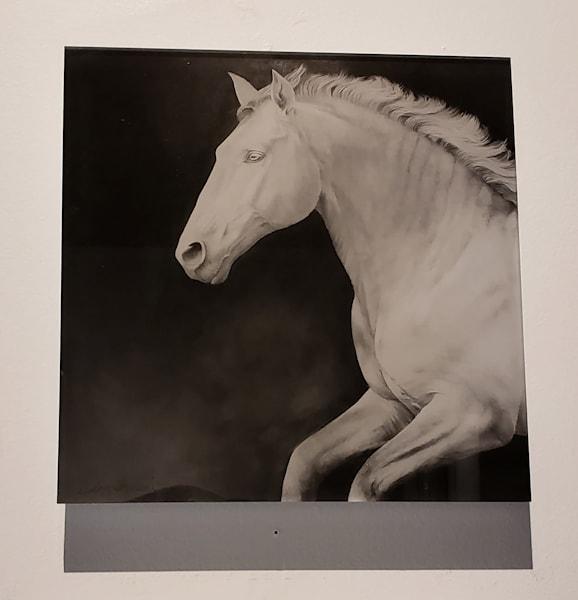 Gris Acrylic Artist Proof Print