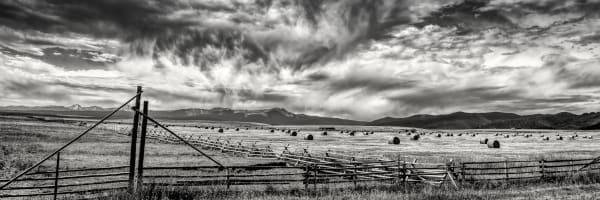 Montana Hayfield