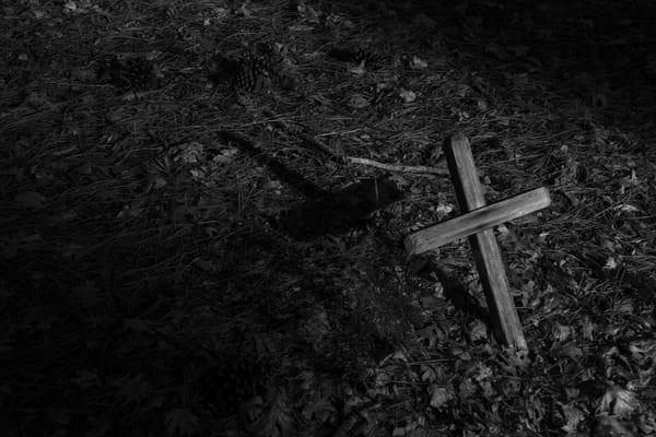 Cross And Pinecones Photography Art | Dan Katz, Inc.