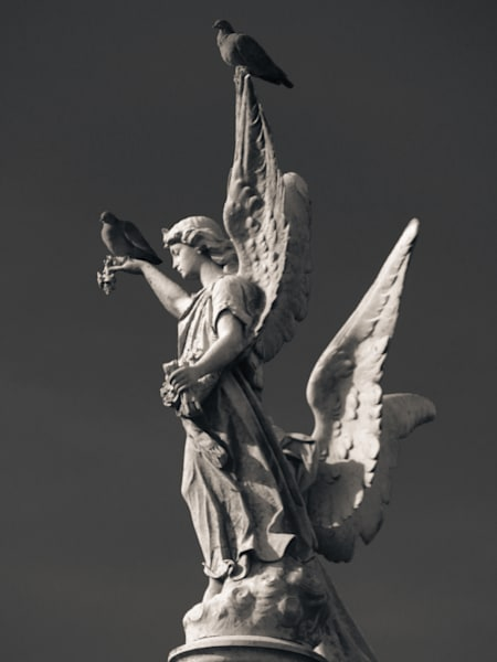 Statue Roost 2 Photography Art | Dan Katz, Inc.