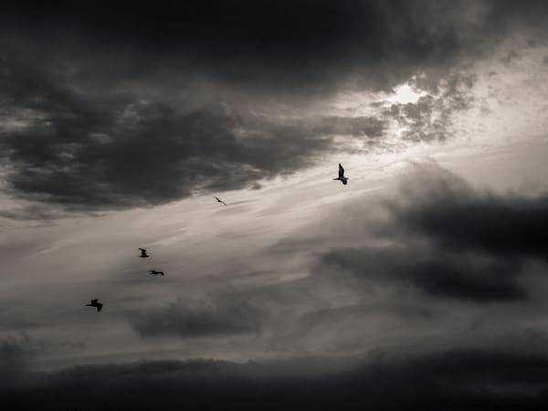 Ocean Peace Photography Art | Dan Katz, Inc.