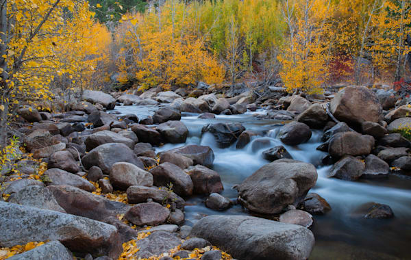 Vivid Colors Along the West Fork of the Carson River | Lake Tahoe Landscape Photography I David N. Braun | California Landscape Photography | Carson River