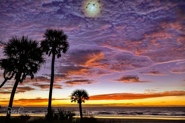 moonlit_dawn