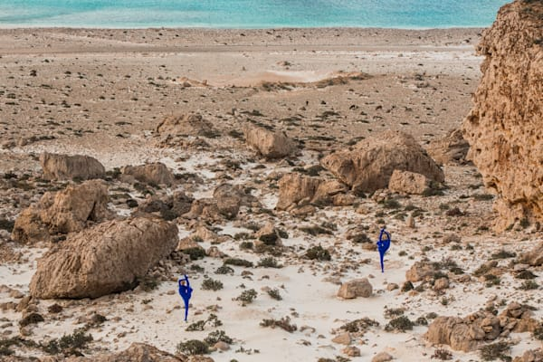 Shores of Socotra