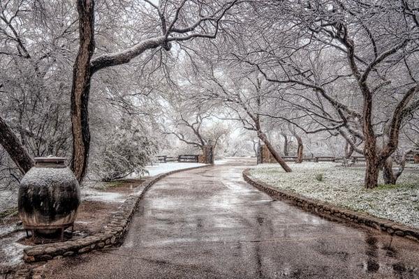 Winter Wonderland Photography Art | Carol Brooks Parker Fine Art Photography