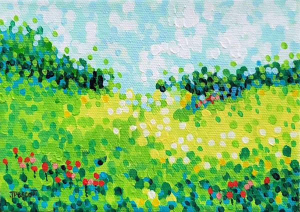 Meadow Sunshine