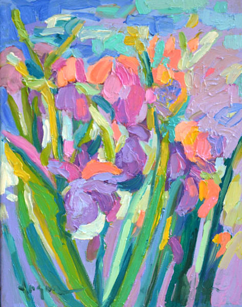 Iris Blush & Sparkle | Dorothy Fagan Joy's Garden