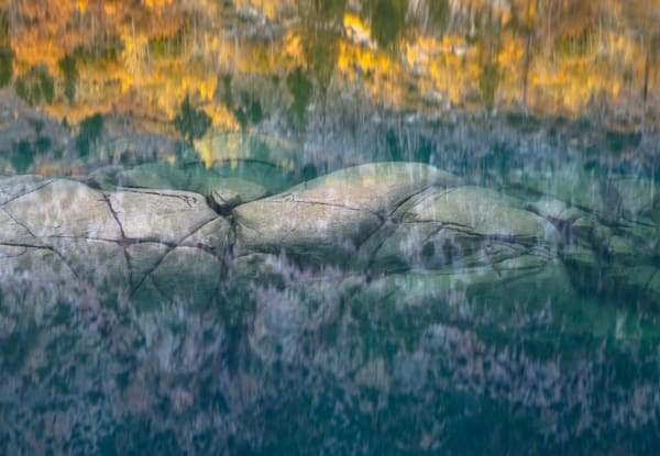 A Watery Grave | Nature & Landscape Photographer Charlotte Gibb