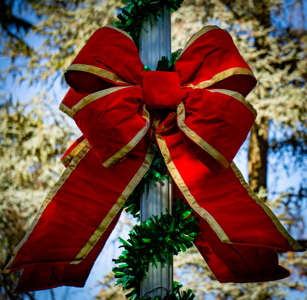 Holiday Bow and Garland on Light Pole | Ron Olcott Photography | Wanderlust Gallery Fine Art