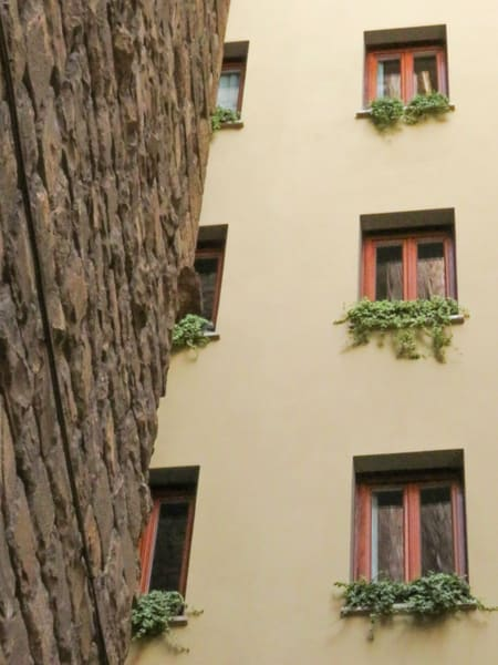 Who Put This Wall In My iwndow, Old and New Buildings, Florence, Italy