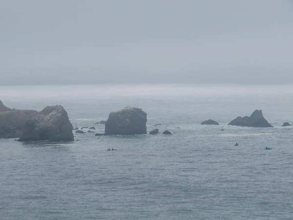 Foggy Coast 1 Of Many Photography Art | Ron Olcott Photography