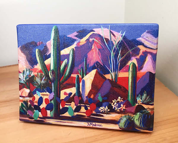 Catalina Magic Mini Canvas by Diana Madaras
