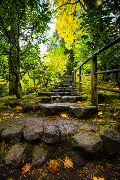 Thousand Steps Art | Earth Trotter Photography