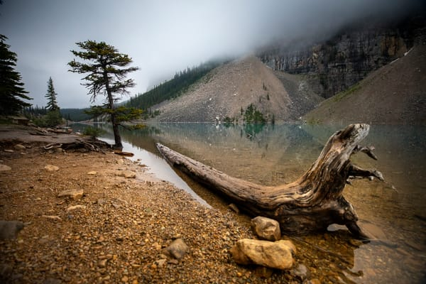 Lake Monsters Art | Earth Trotter Photography