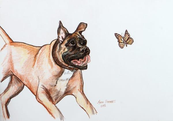 Chasing Butterflies Art | Marie Stephens Art