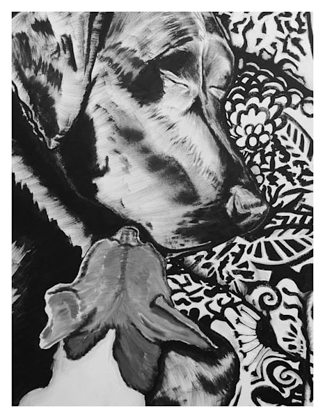 Black And White Bailey And Kai Digital Print On 8.5 X 11 120 Pound Coated Cover Stock Art | Marie Stephens Art