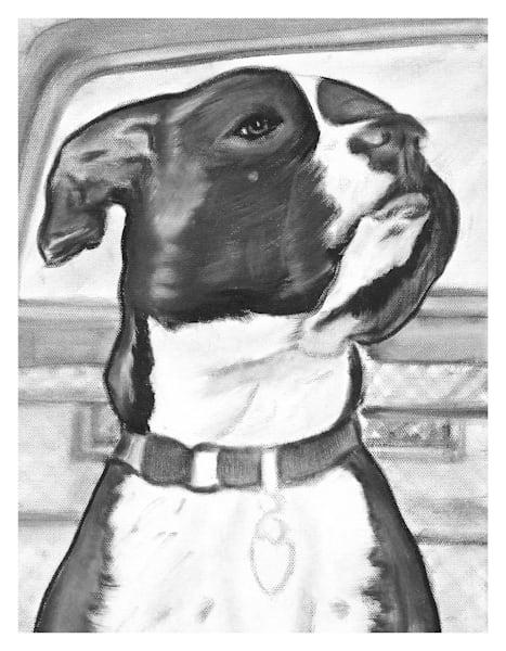 Pit Bull Dog Portrait Fine Art Prints by Marie Stephens Art