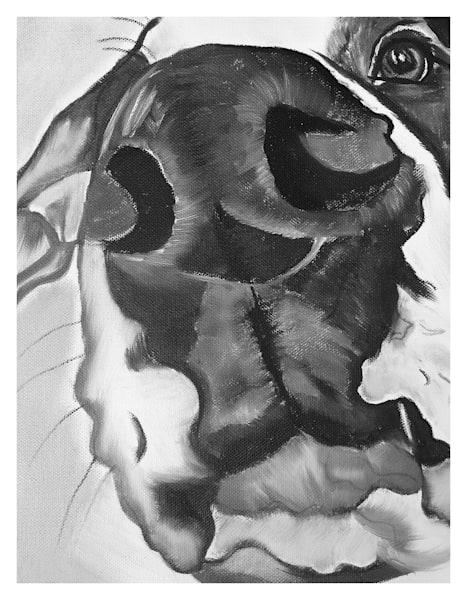 Diesel Great Dane For Digital Print On 8.5 X 11 120 Pound Coated Cover Stock Art | Marie Stephens Art