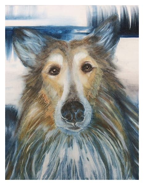 Collie For Digital Print 8.5 X 11 On 120 Pound Coated Cover Stock Art   Marie Stephens Art