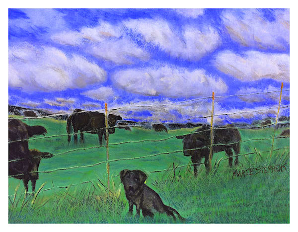 Black Lab With Cows For Digital Print On 8.5x11 120 Pound Coated Cover Stock Art   Marie Stephens Art