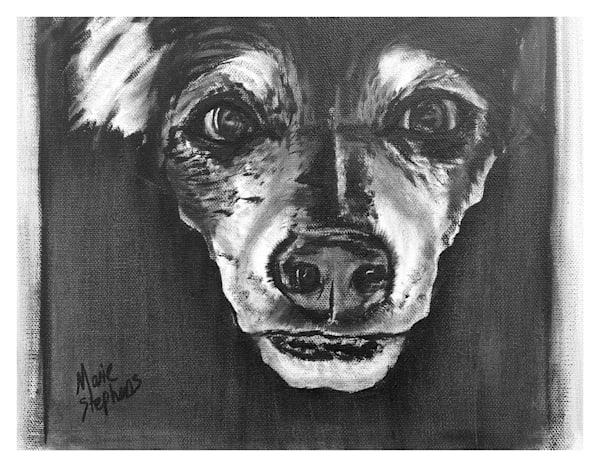 Duke Rat Terrier For Digital Print 8.5 X 11 On 120 Pound Coated Cover Stock Art   Marie Stephens Art