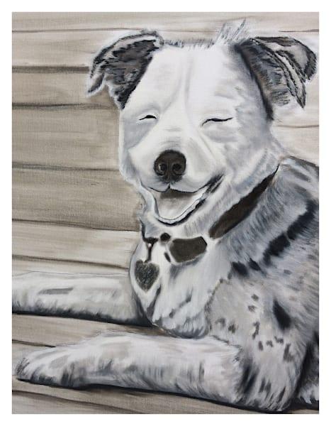 Australian Shepherd wall art prints by Marie Stephens