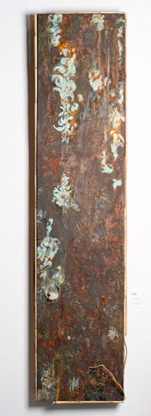 Jade Vine, Strongybolon Macrobotrys Art | Krista Shiner Art