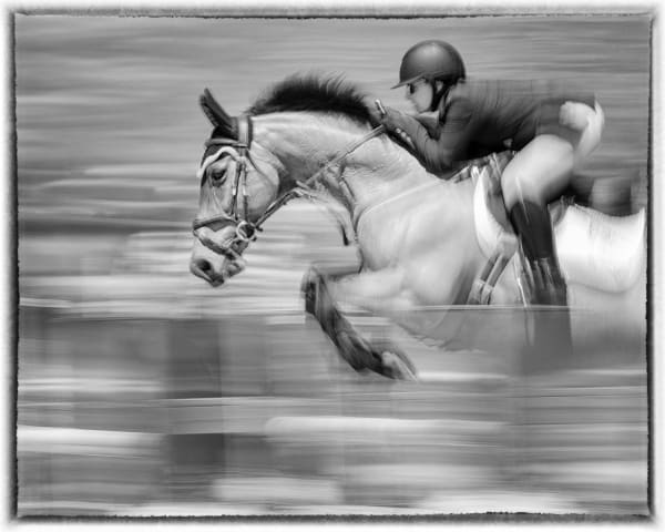 Perfect Form, B&W Photography Art | Carol Brooks Parker Fine Art Photography