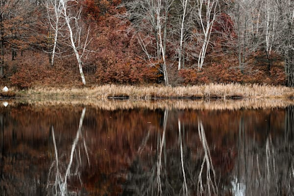 Rusty Reflection Photography Art | Spry Gallery