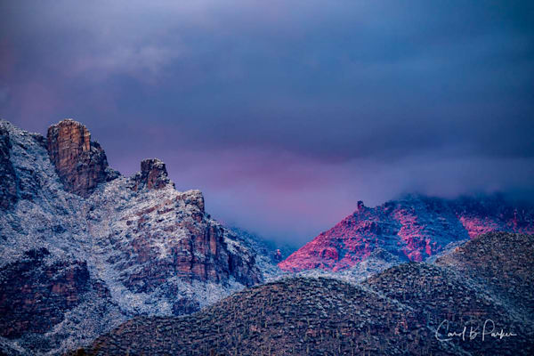 Catalinas Snow 087   Deluxe Photography Art | Carol Brooks Parker Fine Art Photography