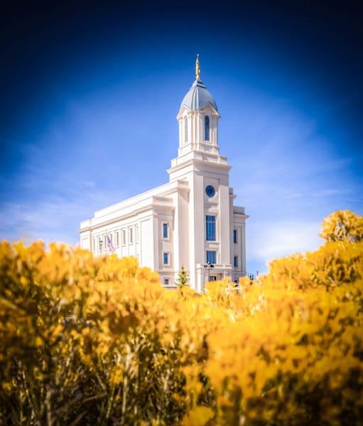 Cedar City Utah Temple - Yellow Field