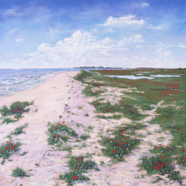 Dune Poppies Art | Chris Doyle Fine Arts