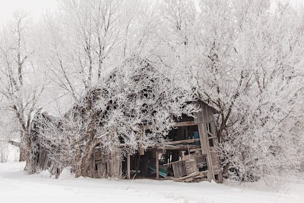 Old Barn And Hoar Frost Photography Art | brucedanz