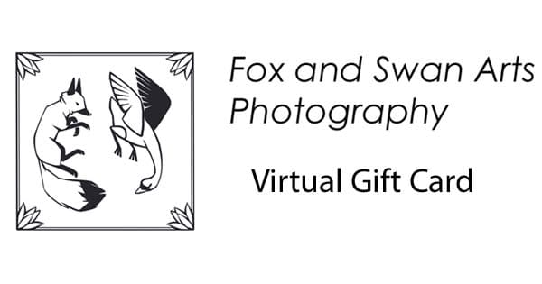 $100 Gift Card | Fox and Swan Arts