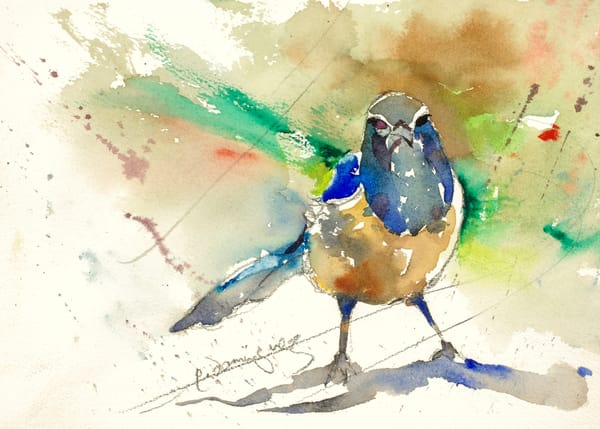 Bluebird Of Sassiness  Art | Patrick Dominguez Art