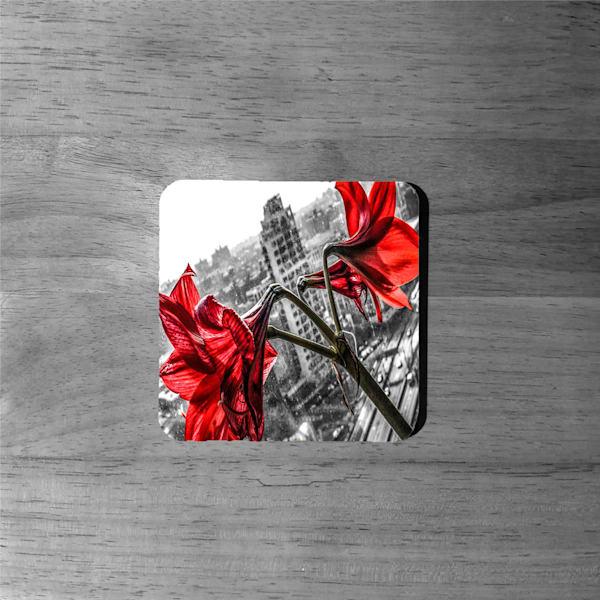 Art: Concrete Lillies'