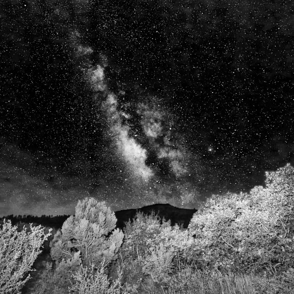 Milky Way And Foliage, La Sal Mountains, Utah Photography Art | ePictureGallery