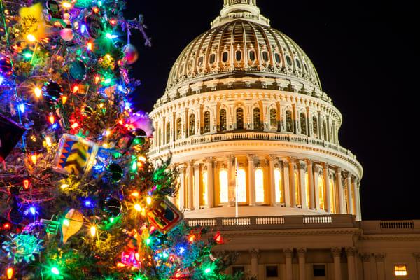 Legislative Branches (Horizontal) Art   Earth Trotter Photography