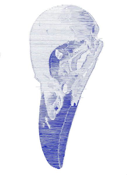 Ben Palmer - Blue Bird