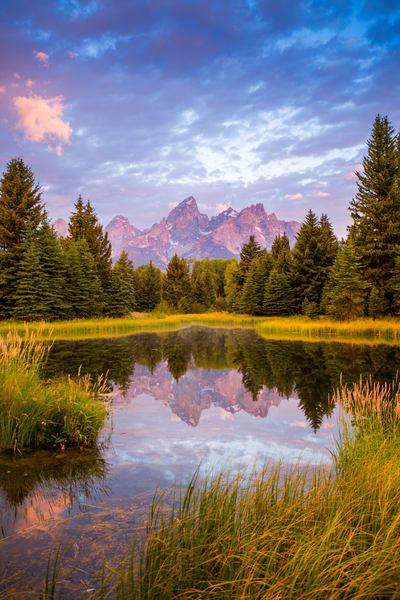 Rise And Shine (Vertical) Art | Earth Trotter Photography