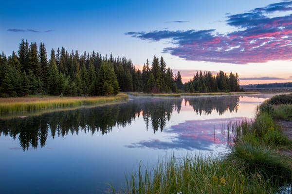 Morning Opportunity Art | Earth Trotter Photography