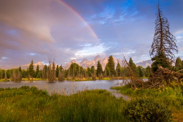 The Melting Pot Art | Earth Trotter Photography