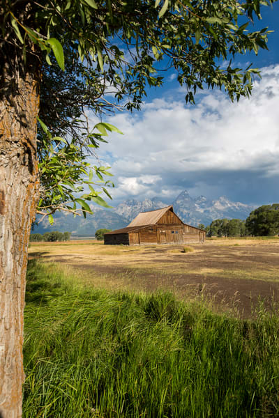 Home On The Range (Vertical) Art | Earth Trotter Photography