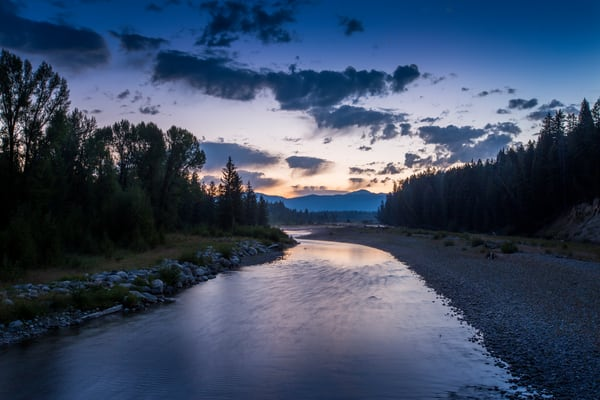 Moose Country Art | Earth Trotter Photography