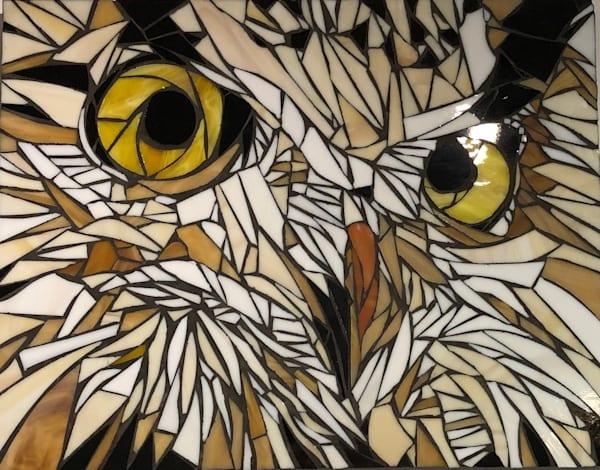 Sharp Art Kelowna Hedwig