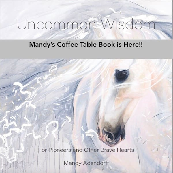 """Uncommon Wisdom Volume 1"" Soft Cover Art Book by Mandy Adendorff 