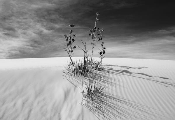 White Sands, Nm #10 Photography Art | Kit Noble Photography
