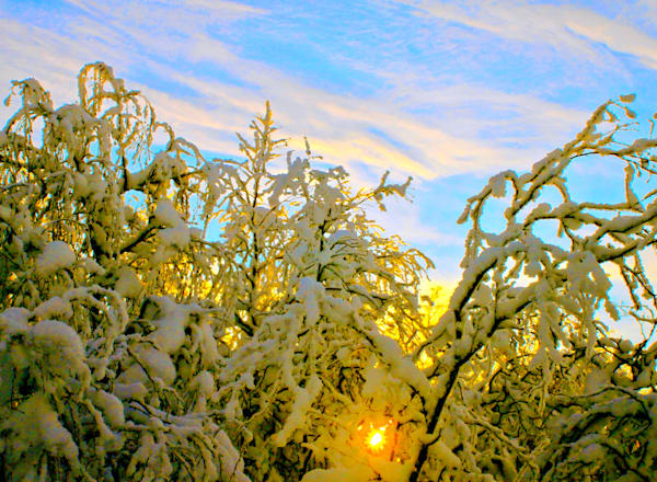 Sun Rays and Snow in Sweden|Fine Art Photography by Todd Breitling