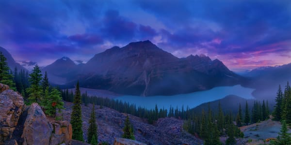 Peyto Lake, famous for its color is an icon in Banff National Park.|Canadian Rockies|Rocky Mountains|